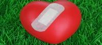 20100319-Zusammenhang zwischen Parodontitis und Herzerkrankungen