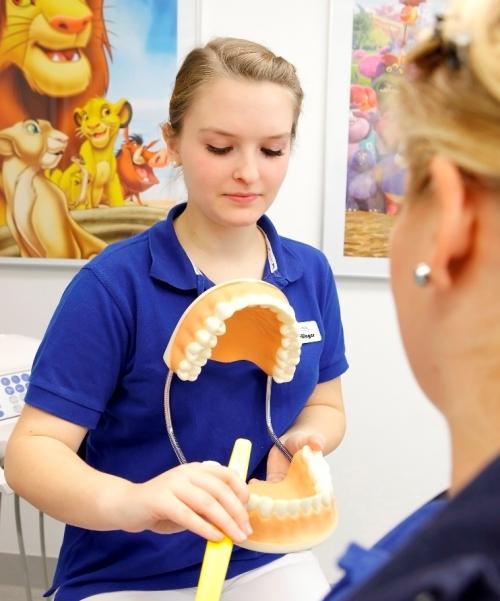 , Dr. Volker Ludwig, Zahnarztpraxis Dr. Ludwig und Kollegen, Fürth, Zahnarzt, Implantologie: Knochenaufbau, Kinderzahnheilkunde, Endodontie (Mikroskop)
